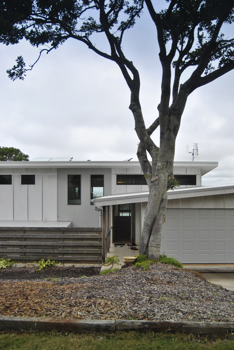 View of fibre-cement clad house and tuckeroo tree